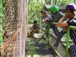 Kebun Binatang